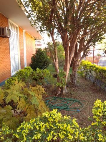 Comprar Casa / Residencial e Comercial em Ribeirão Preto apenas R$ 1.200.000,00 - Foto 4